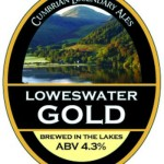 loweswatergold-pumpclip